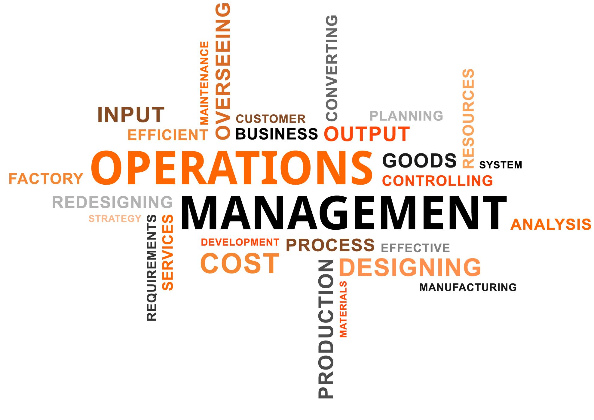 what is vendor development process